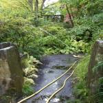 Den Garten gießen
