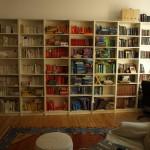 Was das Internet aus unserem Bücherregal gemacht hat