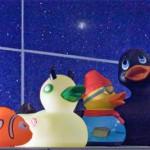 Zu Besuch im kleinen, blauen, glitzernden Bad