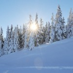 Winterwunderland – nächste Ausfahrt rechts
