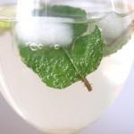Cocktail – Hugo